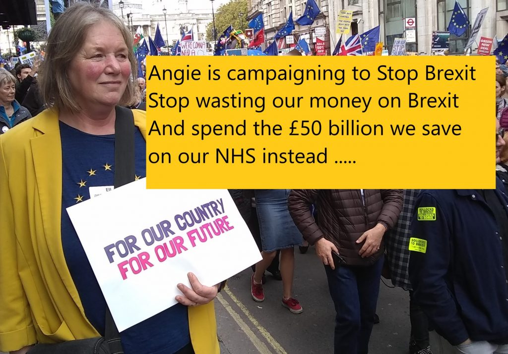 Liberal Democrat PPC, Angela Curwen holding a banner at the People's March in October 2019.